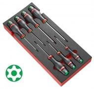 Модуль PROTWIST® под винты Resistorx® Facom
